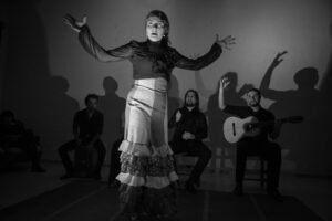 STORIES_Flamenco-3